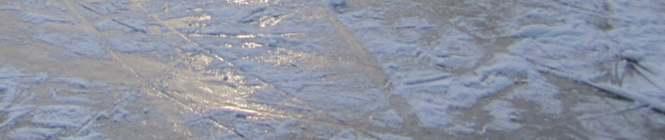 IJs op het Lonnekermeer 5 februari 2012